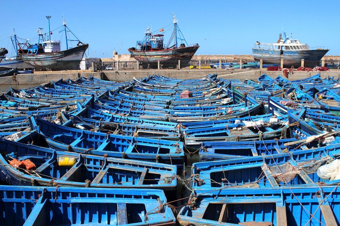 Blue fishing boats