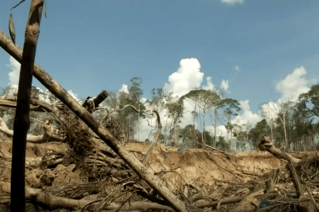Devastated landscape from gold mining in Madre de Dios