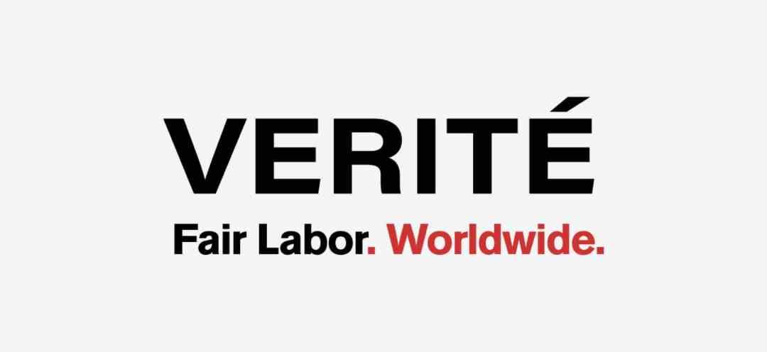 Verite Logo Banner