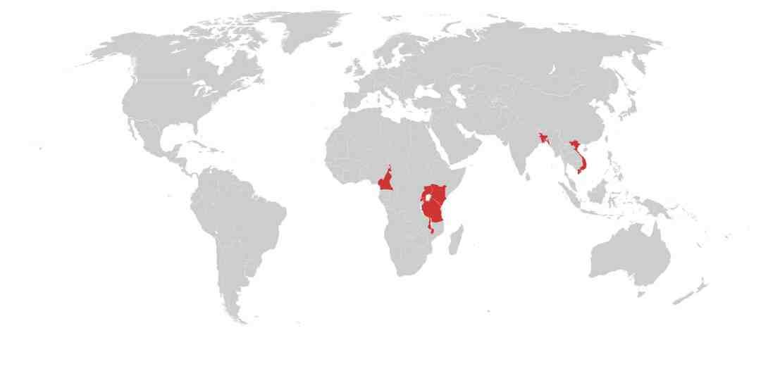 Tea Commodity Risk Map