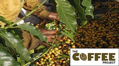 The COFFEE Project Launches in Brazil, Colombia, and Mexico