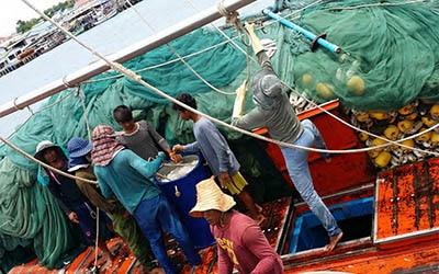 Thai-Shrimp-Report-Cover-preview