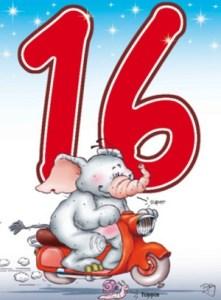 16 jaar verjaardagswensen