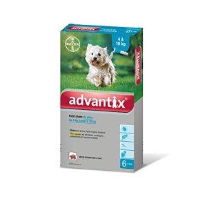 Advantix Petit chien 4 à 10 kg- 6 pipettes antiparasitaires 1 ml