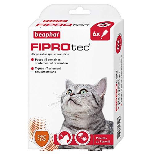 BEAPHAR – FIPROTEC 50 mg – Solution spot-on au Fipronil pour chats (> 1 kg) – Traite les infestations par les puces – Tue les tiques présentes sur le chat en 48 h – 6 pipettes de 0,5 ml