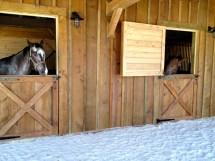 Horse Barn Framing Vermont Timber Works