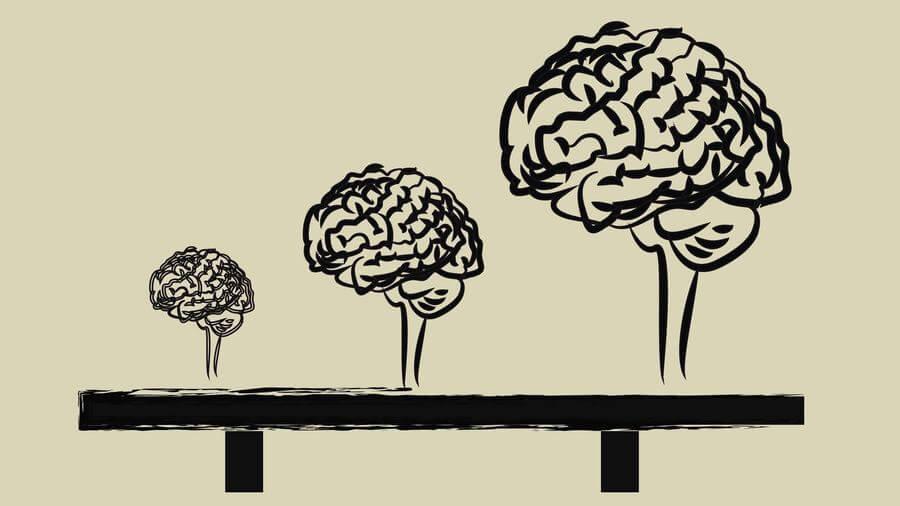 Growth Mindset: Wat is het en hoe leer je het aan?