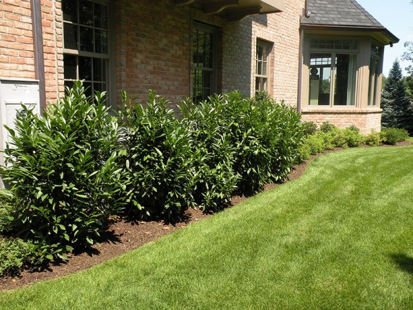 wrights mill landscaping vernon