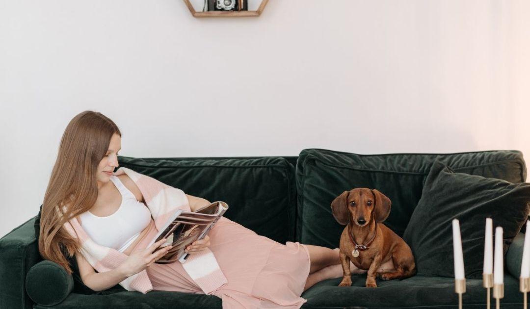 un cane con la proprietaria