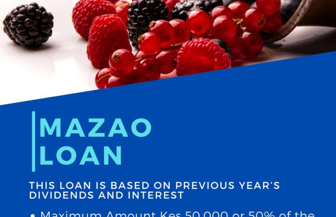 MAZAO LOAN
