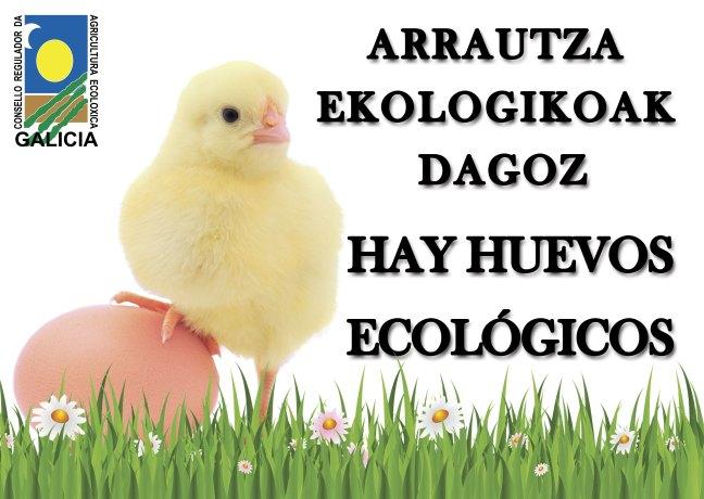 Distruibuidor huevos ecológicos