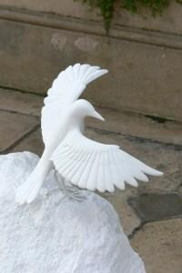White Blackbird, Veronica Wilton