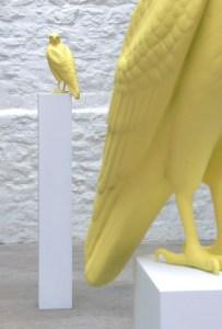 Buteo buteo installation, Veronica Wilton