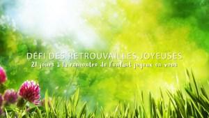 Défi joyeux - Véronique Massard