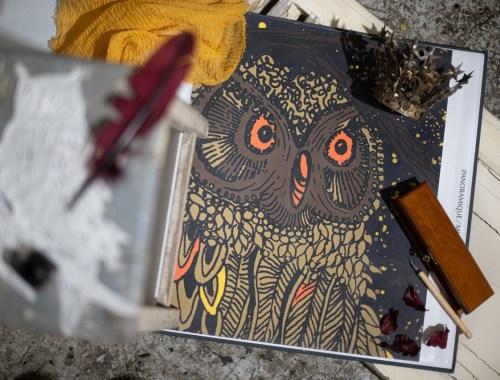 ©Véronique Milioni créatrice lyonnaise, collection de papier peint nature et animaux