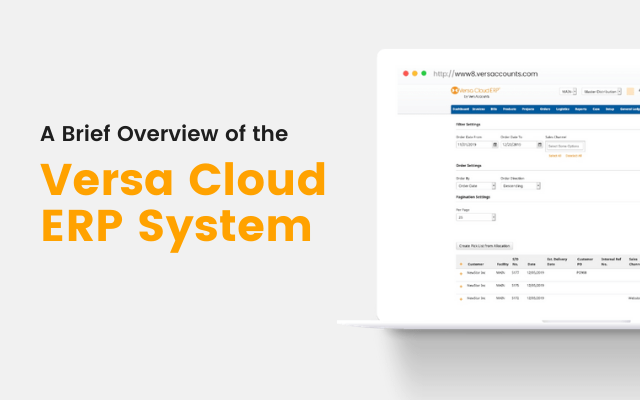 A Brief Overview of the Versa Cloud ERP System