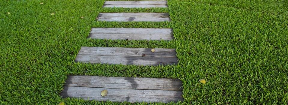 steps in a lawn