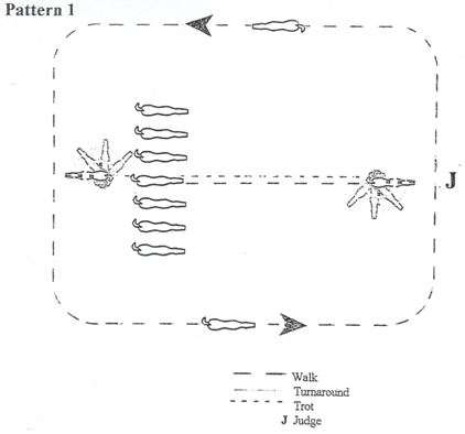 Showmanship pattern 1