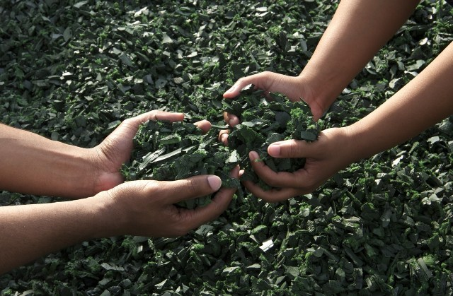 a sustentabilidade empresarial