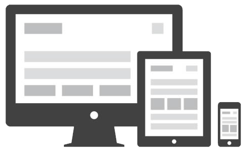 Native Mobile App or Responsive Design