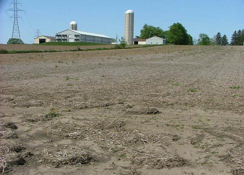 Figure 3. L'accumulation de sol et de débris de culture à l'extrémité basse de ce champ est un indice d'érosion en nappe.