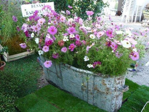 decorar jardin