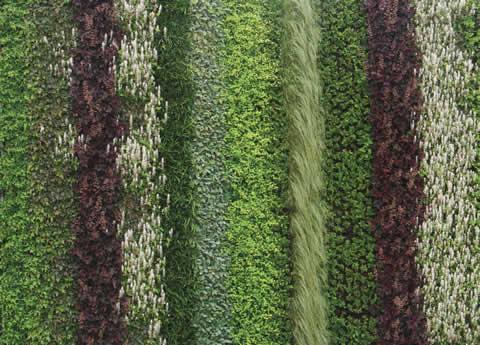 freestanding kitchen island black metal cabinets living walls - vertical gardens roofs ...