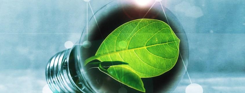 Energiesparen & Ernährung
