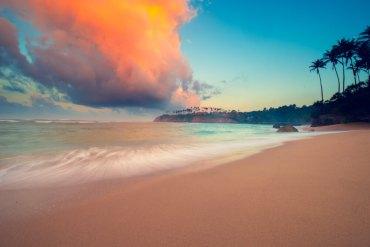 Sri Lanka Travel NZ