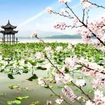 China, honeymoon, couples, travel,