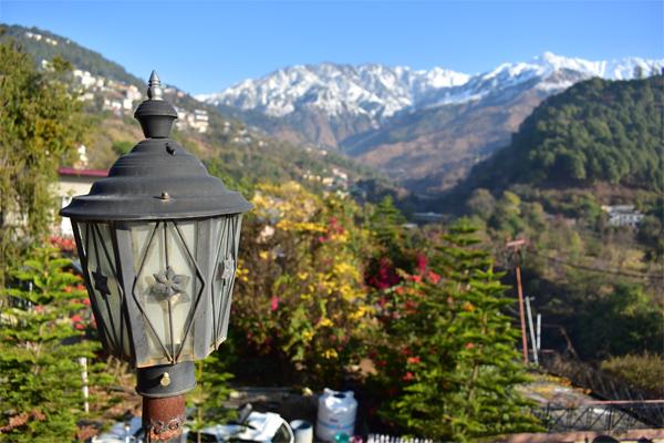 Buddhism, Buddhist, Featured, Hill Station, Himachal Pradesh, Mcleod Ganj, Online Exclusive, Tibetan, Travel