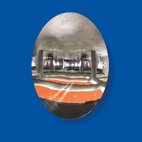Anish Kapoor's Untitled (2005) was the first installation of its scale to be auctioned in India, and went under the hammer for 4.8 crores in February 2016