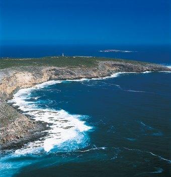 Pristine coastline: Cape Willoughby.