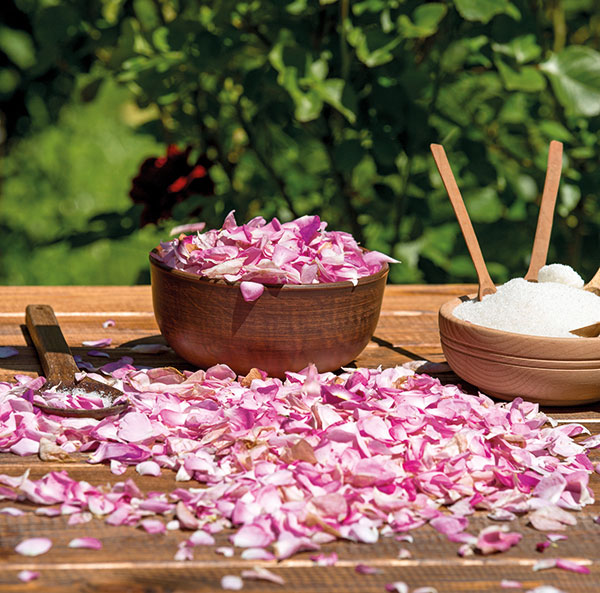 Nerve Tonic Mix Equal Quantities Of Palm Sugar And Desi Rose Petals In A Vessel Keep In The Sun Till A Jam Like Consistency Is Achieved