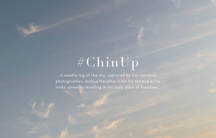 CHinup - resized