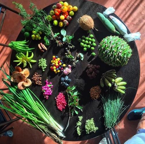 Ingredients for Noma Australia