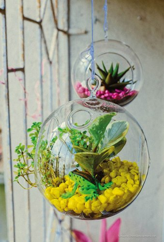 Terrariums are a great way to add vibrancy to cramped interiors