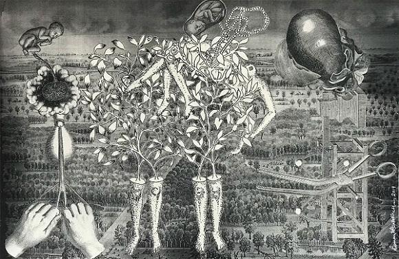Artwork at Osmosis, Tarq Mumbai