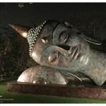 The Buddhas Within by Satish Gupta at Visual Art Gallery, New Delhi