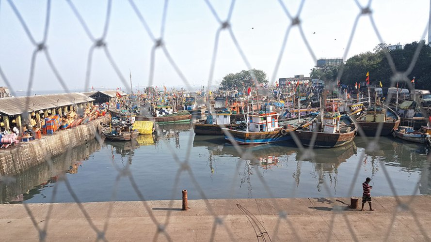Sassoon Docks as seen from the window of one of the project rooms