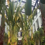 The palm tree courtyard at The Siam in Bangkok, Parmesh Shahani, Parmesh's Viewfinder