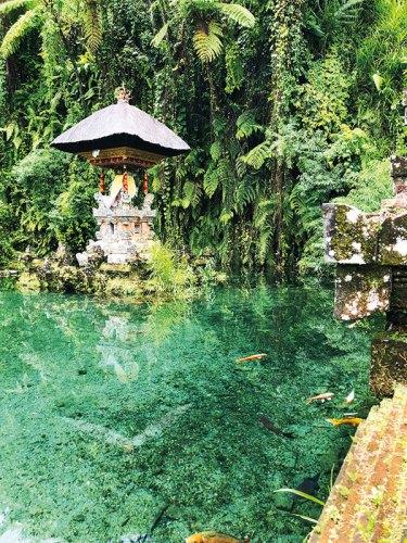 One of Bambu Indah's natural pools