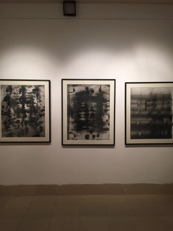 Nalini Malani's 'photograms' from the 1970s at Dhaka Art Summit