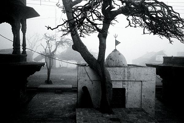 Winter resumes in Brindavan