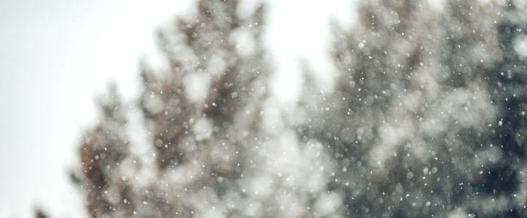 5 Reasons Why Winter is the Worst