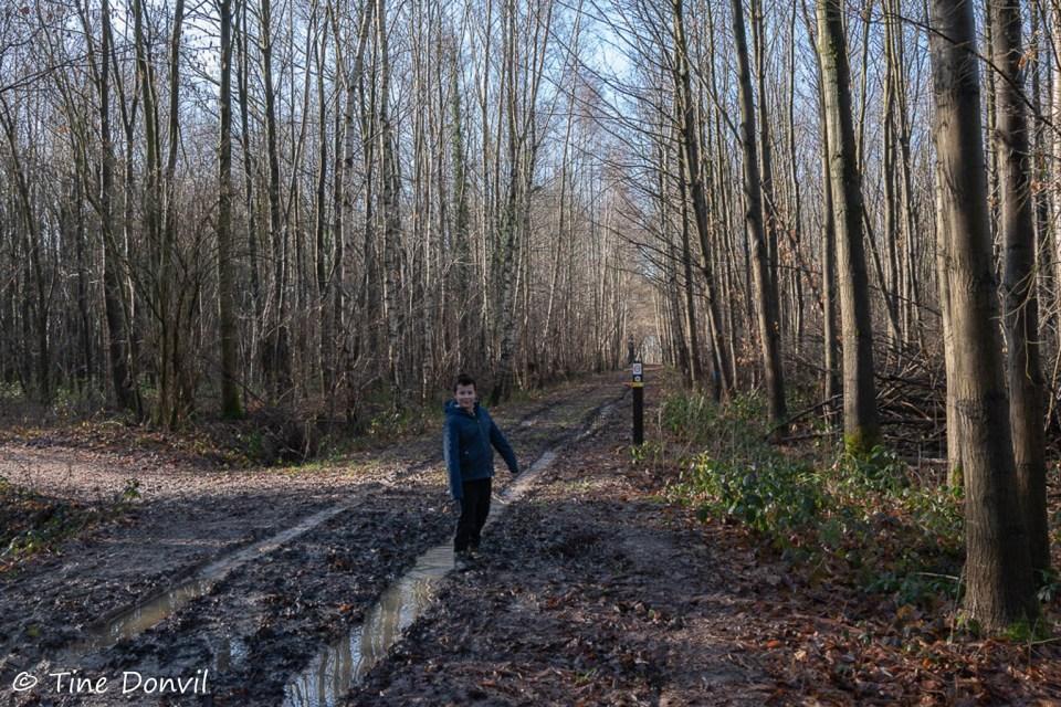 Modderig bospad in het Bellevuebos.