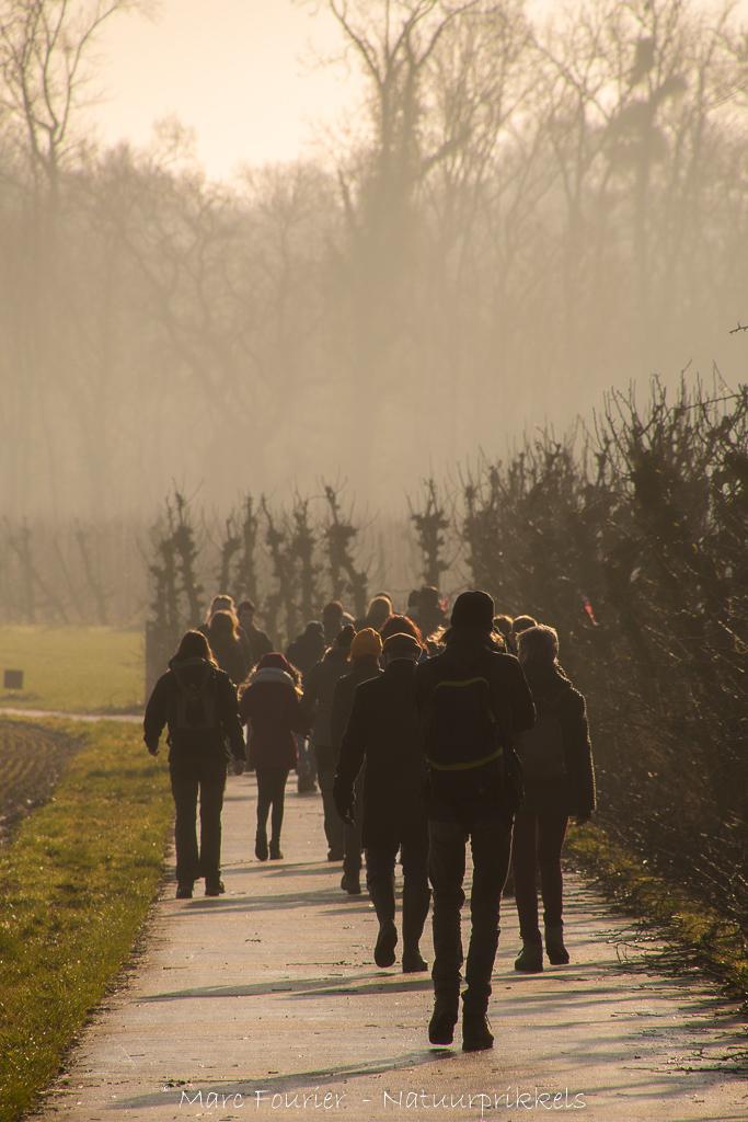 Mooie sfeerfoto tijdens de wandeling.
