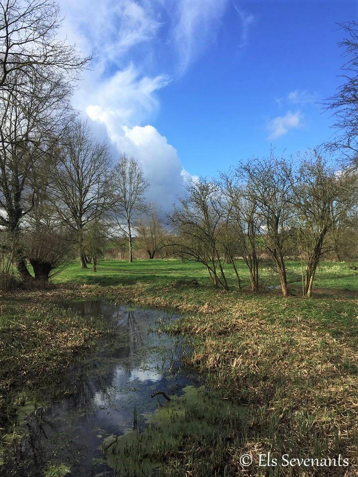 Landschap in Zammelen.