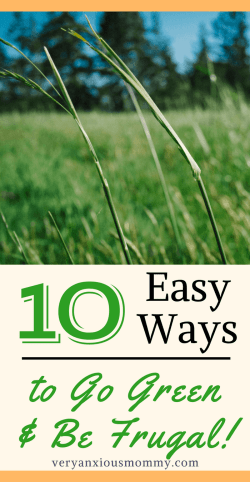 Want to Go Green this Spring? Here are my 10 frugal tips.