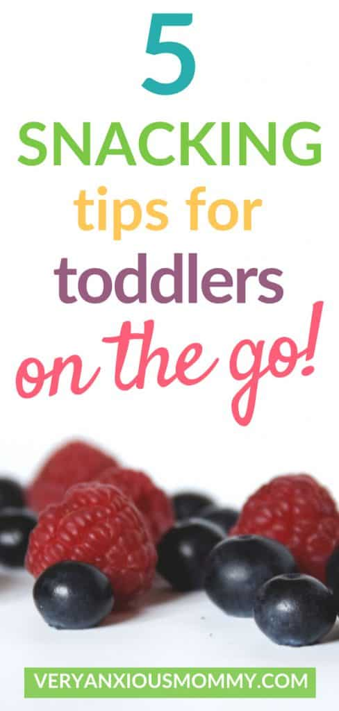 5 Simple Tricks for Healthy Toddler Snacks on the GO! toddler snack tips, preschool snack, kids snack, snack tips, children snacking, snacks on the go, healthy snacks